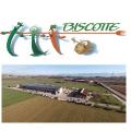 Biscotte Fruits et Légumes SA