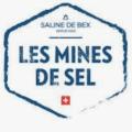 Fondation des Mines de sel de Bex